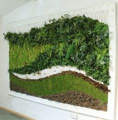 Preserved Moss Wall Art with a Decorative Frame.  Applied to the picture is Preserved Bun Moss, Preserved and Artificial Foliages combined together, Preserved Turf and twigs