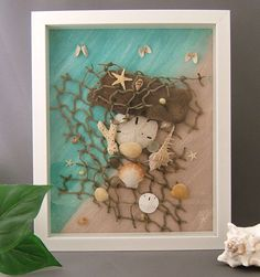 Sand Dollar, Driftwood, and Seashell Framed Collection - Beach Decor