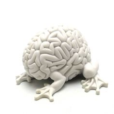 5 inch Jumping Brain : DIY White #toys