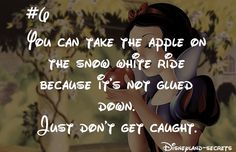In the past you could take the apple on the Snow White ride because it wasn't glued down. This was replaced by a special effect, because it was stolen so often.