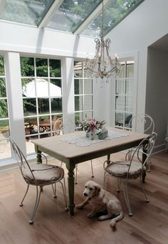 Dogs love conservatories too. Conservatory Dining Room, Conservatory Ideas, Interior Decorating, Decorating Ideas, Decor Ideas, Interior Design, Victorian Terrace House, Character Home, Wood Stoves