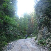 Túra: Kúr – Malý Kriváň – Suchý – Kúr   HIKING.SK Hiking, Country Roads, Walks, Trekking, Hill Walking
