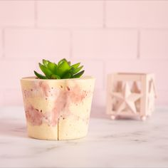 Foto producto para @piuque.homedeco Planter Pots, Photoshoot Style, Container Plants