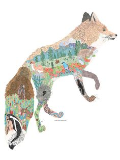 Cascade Red Fox- Jill Bliss