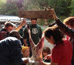 Roxanne Darrow, Lamb slaughter class. Hidden Villa, Los Altos Hills, California. 2014.American youth experience the internet's power to connect with everything all at once, yet they still ache to connect with the old world of blood and soil. These students chose to learn how to raise, slaughter and butcher a lamb. Fat, knives, silent concentration. American youth hunger to understand how the world works, and how they can feed their souls without relying on the broken systems bestowed to…