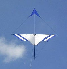 Bird Kite, Kites Craft, Origami, Kite Making, Stunt Kite, Paper Crafts, Flyers, Hobbies, Play