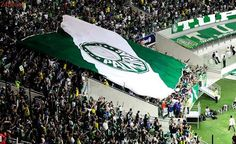 Se mantiver melhor campanha, Palmeiras jogará decisão do Paulista no Pacaembu
