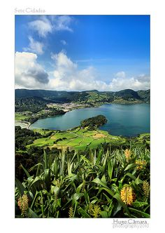 Azores, Portugal - One of the most beautiful places I've ever been. Portugal, The Beautiful Country, Beautiful World, Great Photos, Cool Pictures, Places Around The World, Around The Worlds, Tahiti, Portuguese Culture