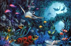images of sea life   Alpha Coders   Wallpaper Abyss Animal Sea Life 309401