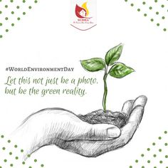 """""""He who plants trees loves others besides himself"""" - Thomas Fuller -Plant Trees-Save Earth-Go Green-World Environmental Day-Save Environment World Nature Day, World Earth Day, World Environment Day Posters, Environment Painting, Save Trees Slogans, Save Nature Quotes, Save Tree Save Earth, Tree Slogan, Paintings"""