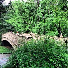 An iron bridge in Central Park