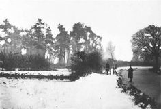 Odiham: 15 inch thick ice on the Basingstoke canal, with Odiham Castle in the background, 1895/6