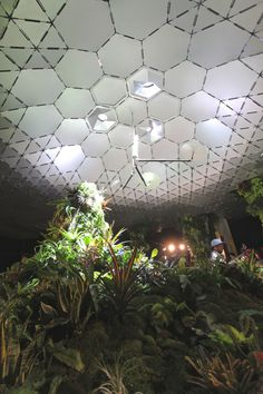 Lowline Lab opens to the public #landscapearchitecture #newyork #mathewsnielsen