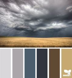 Design Seeds, for all who love color. Apple Yarns uses Design Seeds for color inspiration for knitting and crochet projects. Color Palate, Colour Board, Paint Schemes, House Colors, Pantone, Color Inspiration, Bedroom Inspiration, Paint Colors, Grey Colors