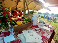 Need More Acres welcomes over 350 people to their farm for the Heirloom TomatoFest featuring local food, heirloom tomato tasting, a community art mural and local chefs.  www.needmoreacres.com