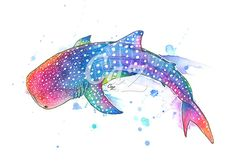 Rainbow Whale Shark Watercolor Painting by CazziArt.deviantart.com on @deviantART