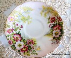 Royal Albert Wild Rose Vintage Fine Bone by NelliesTimelessTreas