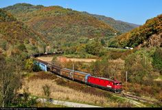 RailPictures.Net Photo: 461-155 ZS - Zeleznice Srbije ZS 461 at Vladičin Han, Serbia and Montenegro by Dusan Railfan