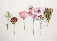 Pretty spring florals: http://www.stylemepretty.com/vault/gallery/12906 Photography: KT Merry - www.ktmerry.com