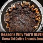 Old Coffee Beans into a facial scrub... say what? =) Awesome. #CoffeeScrub Uses For Coffee Grounds, Coffee Uses, Coffee Table Refrigerator, Coffee Face Scrub, Ways To Recycle, Reuse, Coffee Tasting, Facial Scrubs, Gardens