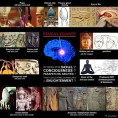 Pineal gland - The Third Eye ~ how long has its importance been known and why doesn't the western world put more recognition on its significance (floride destroys it for example) The has started SAY NO TO SECRET SOCIETIES/ FREEMASONRY! Master Of The Universe, 3rd Eye Chakra, Eye Of Ra, Ange Demon, Pineal Gland, Spirit Science, Western World, Ancient Aliens, Sacred Geometry