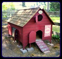 Building a Chicken Coop ? 7 Things to Consider