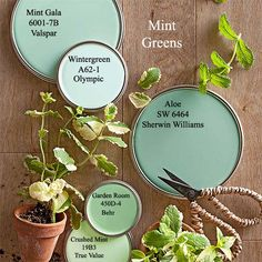 Mint Green paint colors via BHG.com
