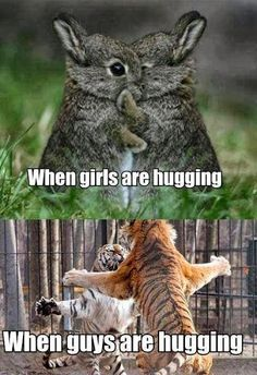 24 best Funny Memes images & Hilarious Pictures If you're having a hard week. We know that the world is strange, but cute funny memes cat and funny pictures Funny Animal Jokes, Stupid Funny Memes, Cute Funny Animals, Funny Relatable Memes, Funny Animal Pictures, Cute Baby Animals, Funny Pics, Funniest Memes, Funny Stuff