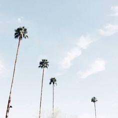 Palm Springs dreaming... // via @mija_mija
