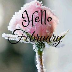 Hello February month february february quotes hello february welcome february Seasons Months, Days And Months, Seasons Of The Year, Months In A Year, Hello February Quotes, Welcome February, Happy February, February Images, April Quotes