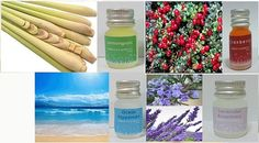 essential oil pure lot fragrance aroma burner by candoall Essential Oil Set, Lemon Grass, 100 Pure, Lavender, Fragrance, Essentials, Pure Products, Unique Jewelry, Handmade Gifts