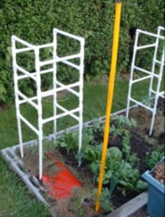 Pvc Tomatoe Cages   PVC Tomato Cages Or Cucumber And Squash For Climb Vines.