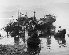 Fish market, Sha Tin, 1966