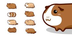 guinea pigs by Aaron Randy