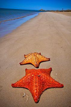 Por la Costa Guajira by Minchov, via Flickr