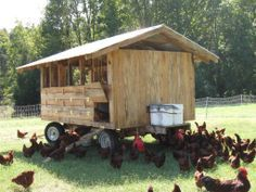 mobile poultry housing - Google Search