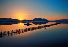 Mesologgi sunset