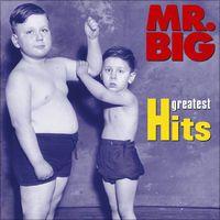 Shazamを使ってMr. BigのTake Coverを発見しました。 https://shz.am/t395580 Mr. Big「Greatest Hits」