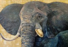 Elephant, cm, oil on canvas Science And Nature, Oil On Canvas, Wildlife, Elephant, Painting, Animals, Animales, Animaux, Painted Canvas