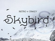 Skybird Unique font