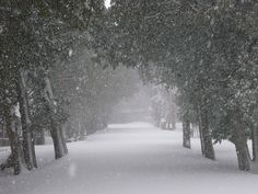 Door County Snow Storm by mark.buehl, via Flickr