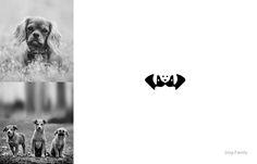 O designer indiano Shibu PG utilizou dois elementos distintos para fazer criativos logos.