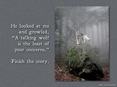 """He looked at me and growled, """"A talking wolf is the least of your concerns."""" Finish the story Daily Writing Prompt Picture Writing Prompts, Dialogue Prompts, Creative Writing Prompts, Story Prompts, Book Prompts, Journal Prompts, Teaching Writing, Writing Help, Writing A Book"""
