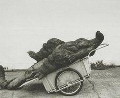 The end of Godzilla