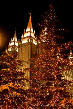 Can't wait to go see the Christmas lights at Temple Square! Beautiful Castles, Beautiful Places, Lds Temple Pictures, Later Day Saints, Temple Square, Lds Temples, Lds Church, Christmas Activities, Christian Art