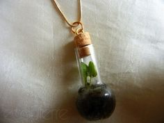Tiny Terrarium | 58 Very Tiny Cute Things