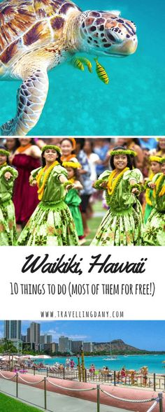 There are so many things to do in Waikiki but you might not know that some of the nicest ones are absolutely free. Check out this guide for the best deals!