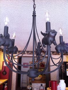 Flying pig chandelier. I need this for the new house!!!