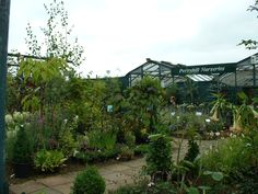 Visit Perryhill Nurseries for a great selection of seeds and plants to get you garden in shape for the summer!