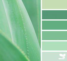 Likes, 5 Comments - Design Seeds® Design Seeds, Paint Color Schemes, Paint Colors, Palette Verte, Pantone, Soothing Colors, Colour Board, Color Stories, Color Pallets